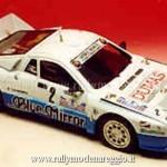 1984 - Rally Appennino Reggiano, Ragastas-Sighicelli