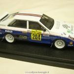 1987 - Rally della Lana, De Martini-Gibellini