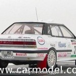 1993 - Rally della Lana, Liatti-Alessandrini