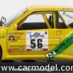 2002 - Rally Appennino Reggiano, Rossi-Gozzo
