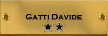 Gatti Davide