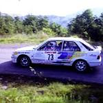 1992 - Rally Appennino Modenese, Schenetti-Borellini